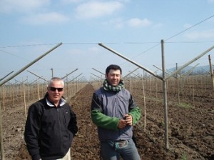 Chile EG grape system delivers high yields