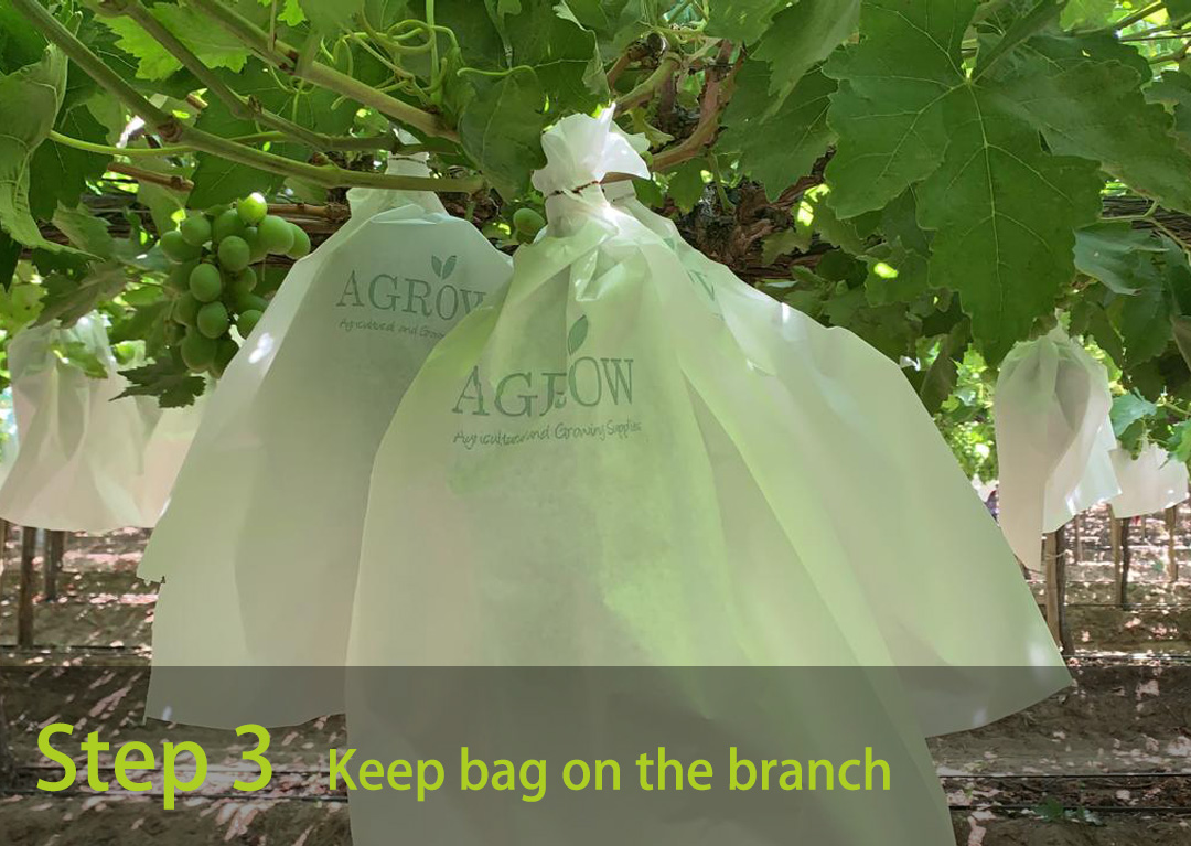 Keep bag on the branch